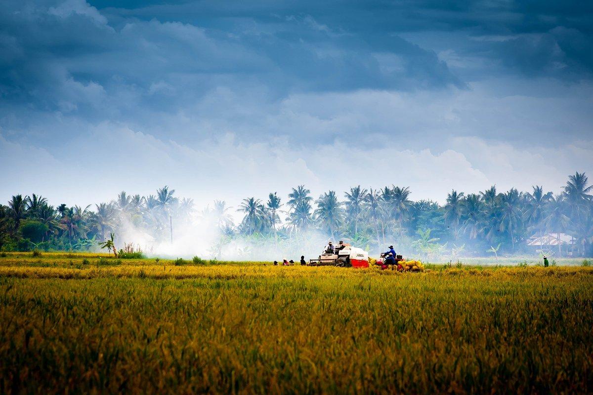 Untitled photo of Vietnam (License: CC0)