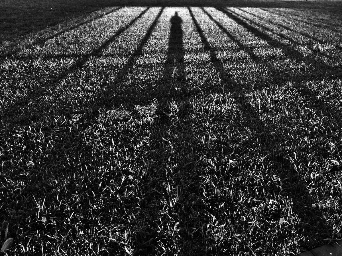 Title: Long shadows | Author: lucpher | Source: lucpher on Flickr | License: CC BY-NC-ND 2.0
